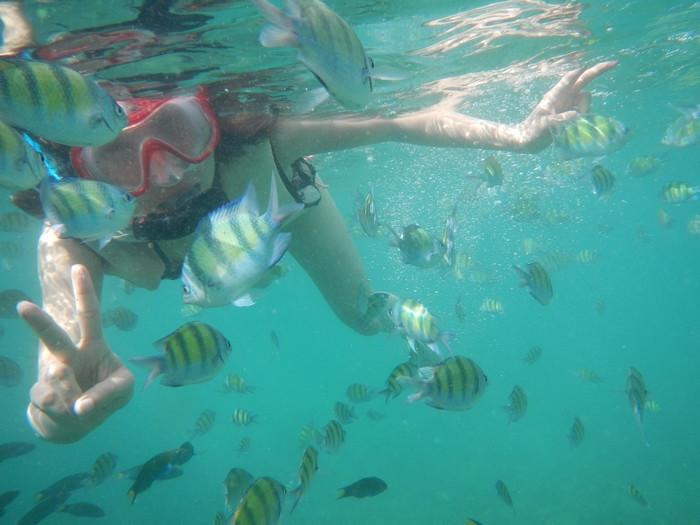蘇梅島 蘇梅島攻略 泰國蘇梅島 蘇梅島自由行 蘇梅島水上活動 蘇梅島必去