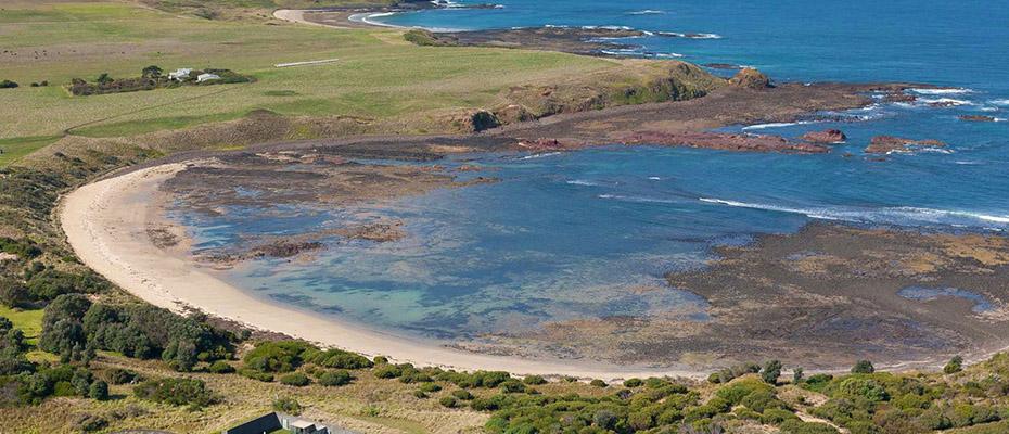企鵝島企鵝歸巢門票,墨爾本企鵝島門票,企鵝島一日遊