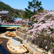 日本神戶溫泉-有馬溫泉太閣之湯+溫泉魚療