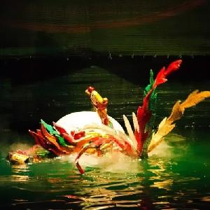 (特價)越南水上木偶戲門票(可送至酒店)