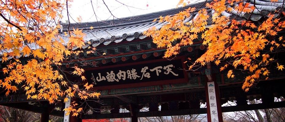 2016韓國內藏山賞楓一日遊,內藏山紅葉2016一日遊,韓國內藏山賞楓團2016