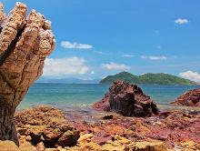 【生態遊】香港世界地質公園之旅一日遊