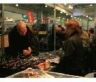 2015年38th俄羅斯莫斯科秋季國際釣具、狩獵工具展覽會